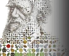 FTU Course: Has Science Buried God?