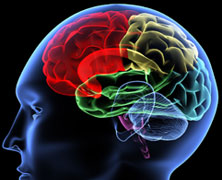 New FTU Course: Are You Using Your Brain?
